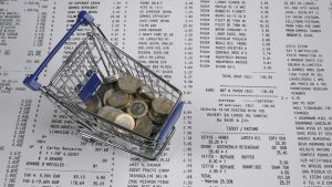 fiscalization fiscalisation online montenegro